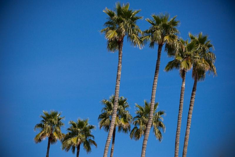 Scottsdale-9
