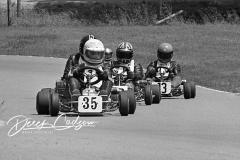 1978 Canadian Pro Series, Goodwood